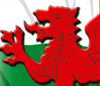 Wrexham Supporters Society (WST) and Wrexham AFC Governing Board and Operational Board Policy